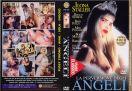 DVD_FMD_0205