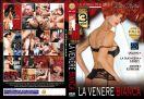 DVD_FMD_1241