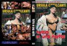 DVD_EUR_141