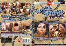 DVD_mfx-3119