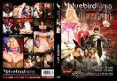 DVD-BBF009