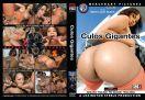 DVD_MLS_041